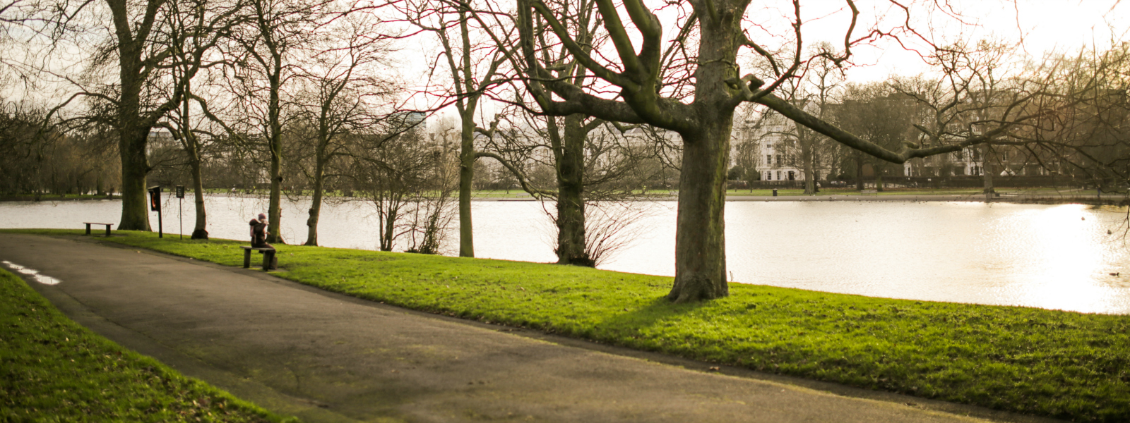 Person sitting on bench in a park next to a river