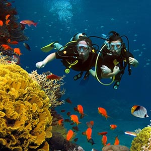 two scuba divers underwater with colourful fish