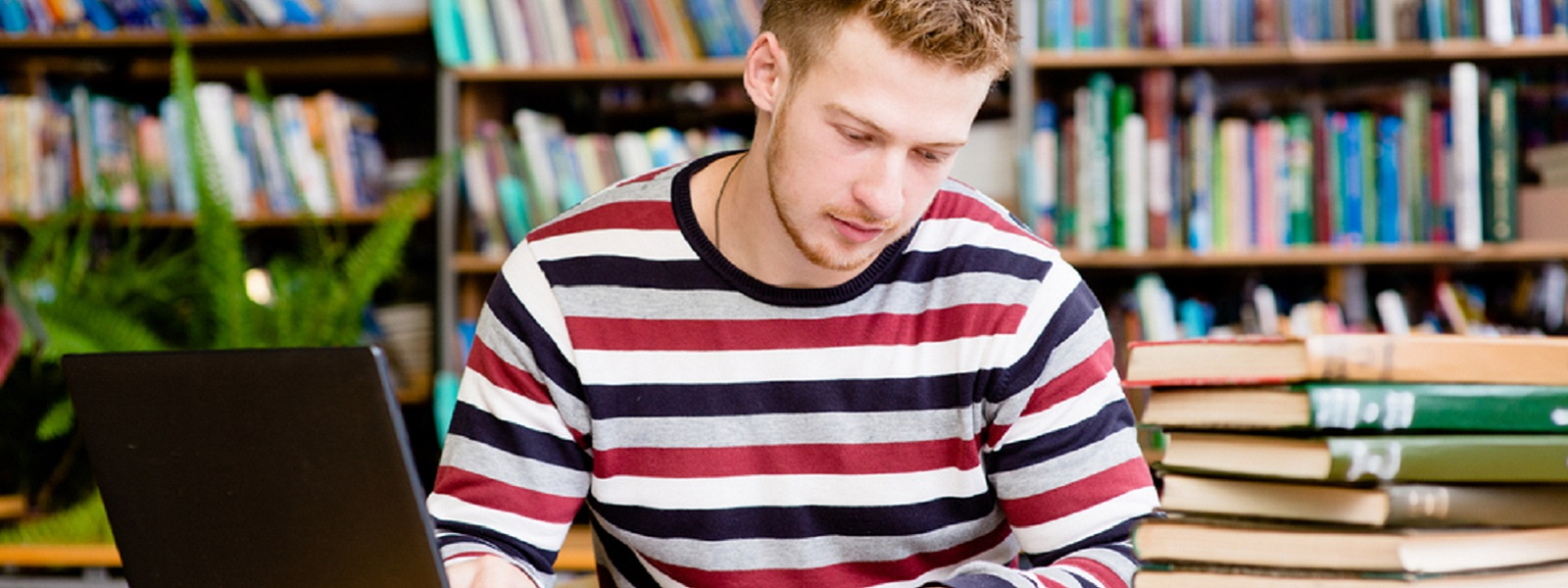 Male studying in library with laptop