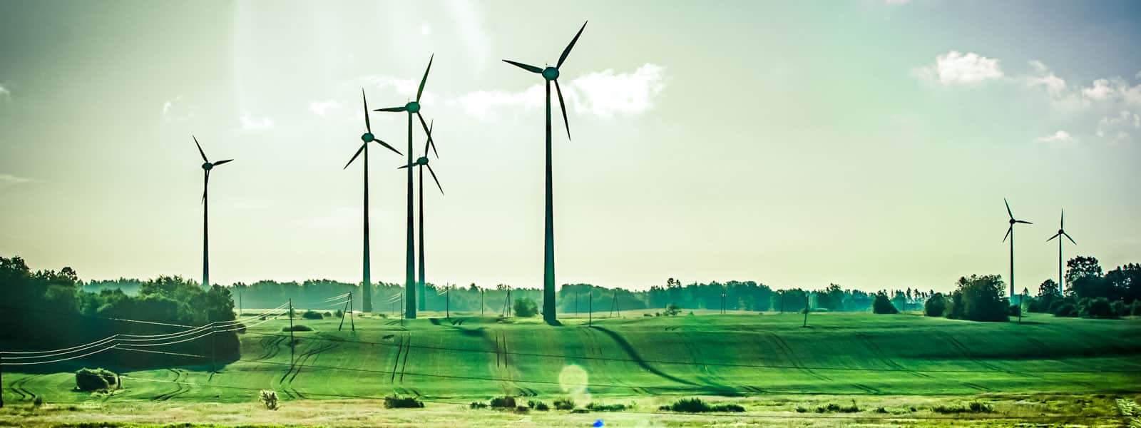 windmills standing in a green field