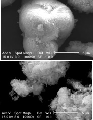 Commercially produced hydroxy apatite (top); biologically produced hydroxyl apatite with larger surface area for trapping radionuclides (lower)