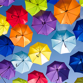 Umbrellas in a range of different colours