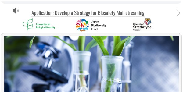 Screenshot Application to Develop a Strategy for Biosafety Mainstreaming