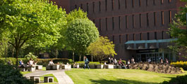 Campus and library in the sunshine