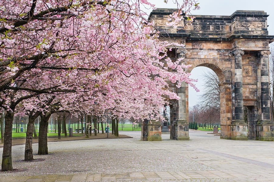 The McLennan Arch, Glasgow Green surrounded by cherry blossom on the trees in spring