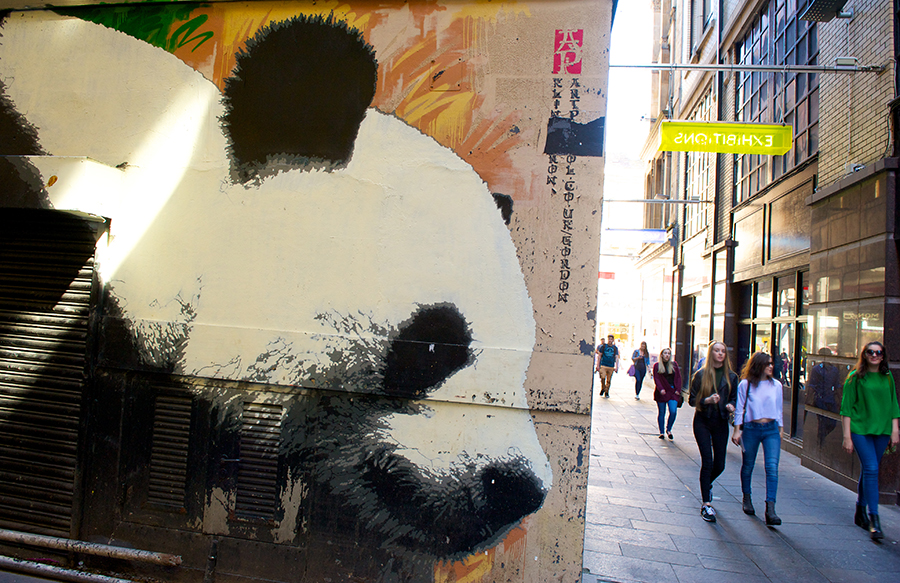Panda mural on Mitchell Lane