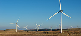 Turbines at wind farm