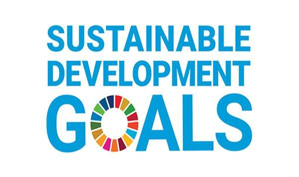 Sustainable Development Goals logo.
