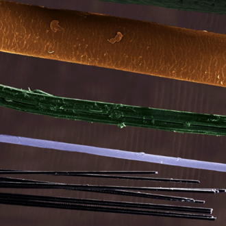 A cropped composite image featuring various fibres all imaged under SEM. The image is colourised to distinguish the different reinforcement fibres shown.