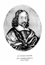 Portrait of Sir Thomas Browne from a drawing attributed to the artist and engraver David Loggan (bap. 1634, d. 1692). Reproduced in The Works of Sir Thomas Browne, Faber & Faber, 1964.