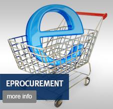 E procurement essays